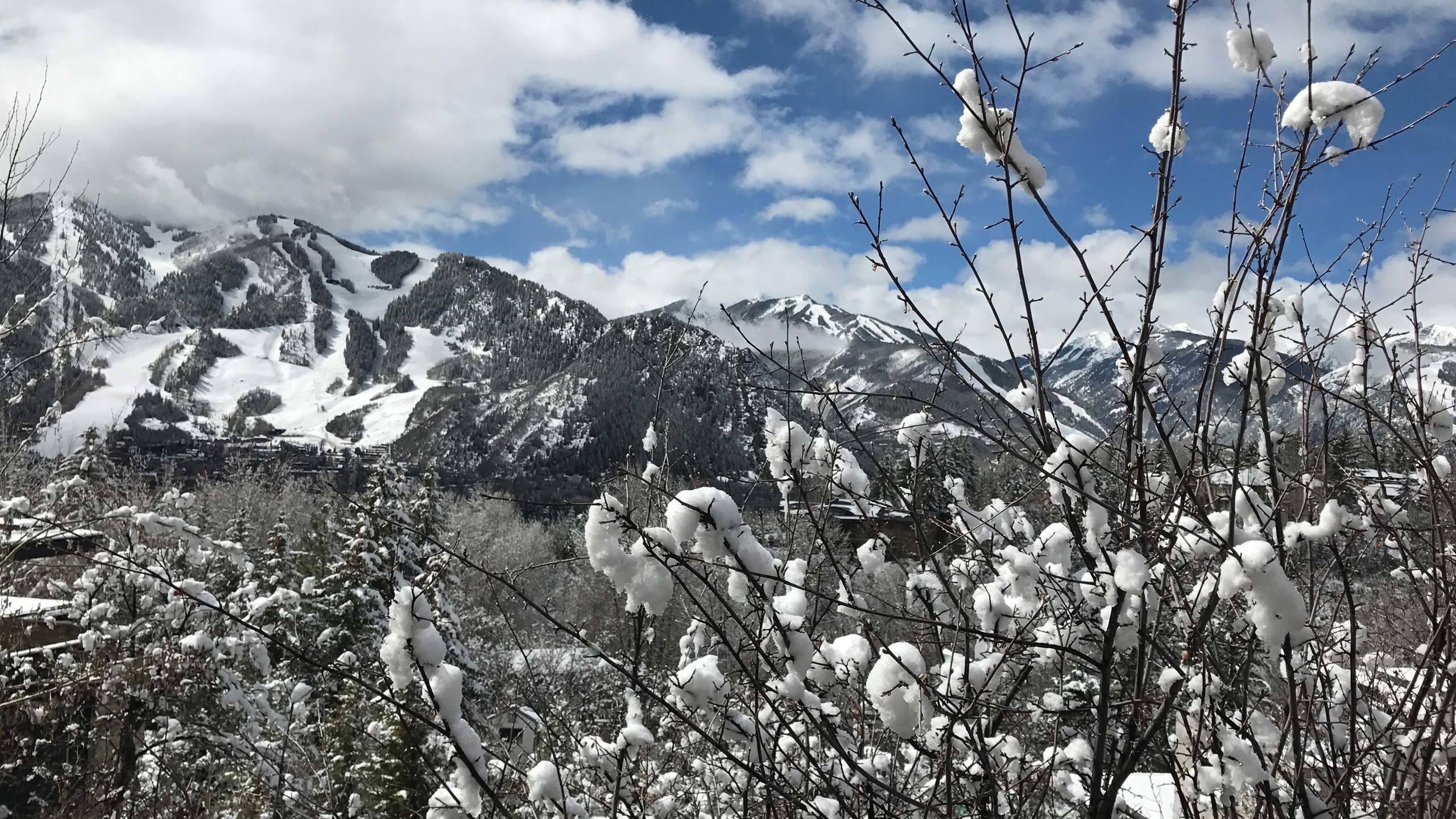 Homepage Aspen Winter